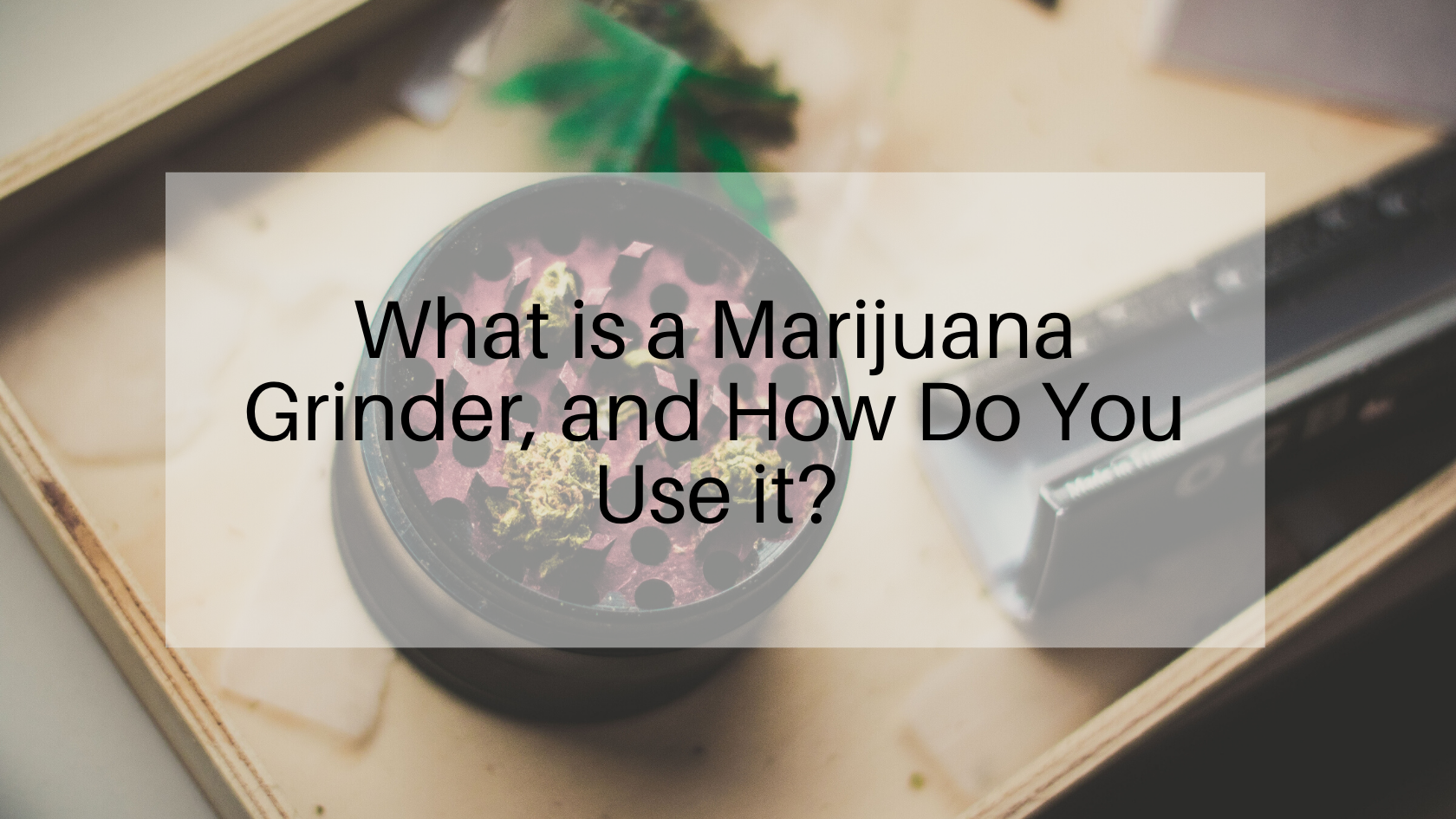What is a Marijuana Grinder, and How Do You Use it?
