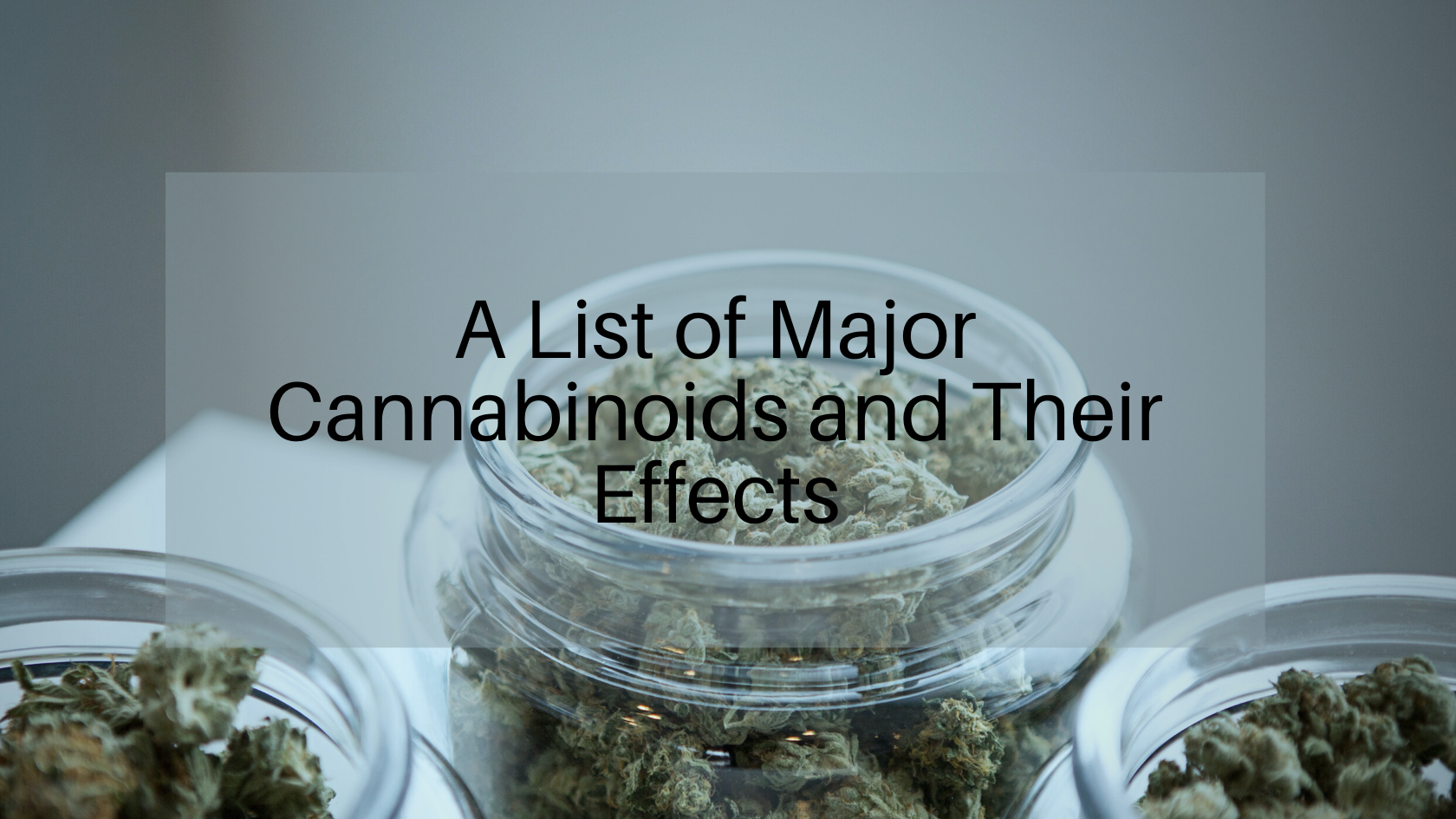 A List of Major Cannabinoids and Their Effects